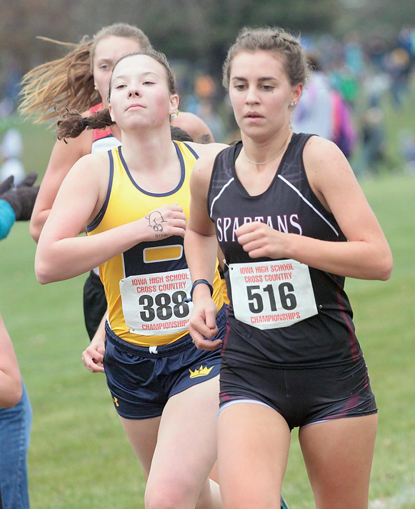 Exira-EHK senior Rose Andersen placed 64th in her first state meet. (Photos by Mike Oeffner)