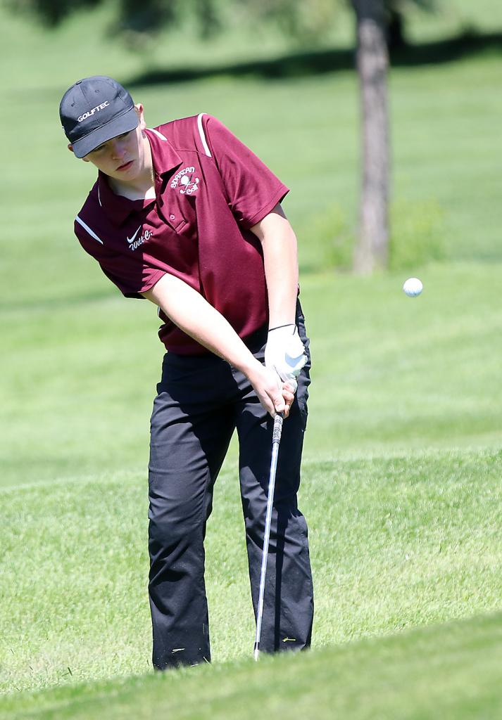 Exira-EHK's Will Carroll earned a sixth-place medal at last year's 1A state golf meet.
